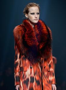 milan-fashion-week-cavalli-474140551.jpg
