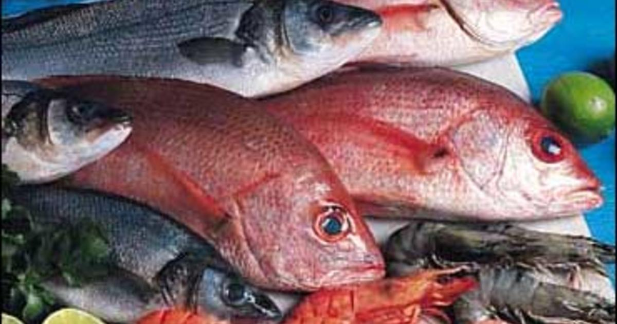 Study more mercury in lake fish cbs news for How much mercury is in fish