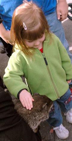 Groundhogs & Hawg