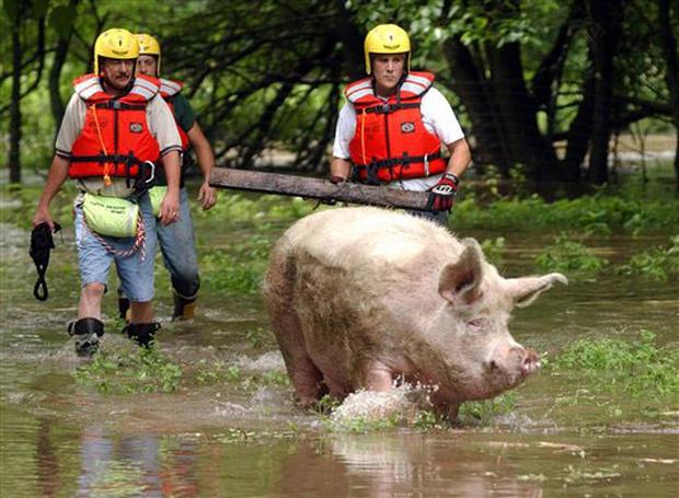 Northeast Flooding