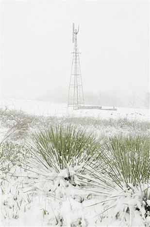 Flaky Spring Snow