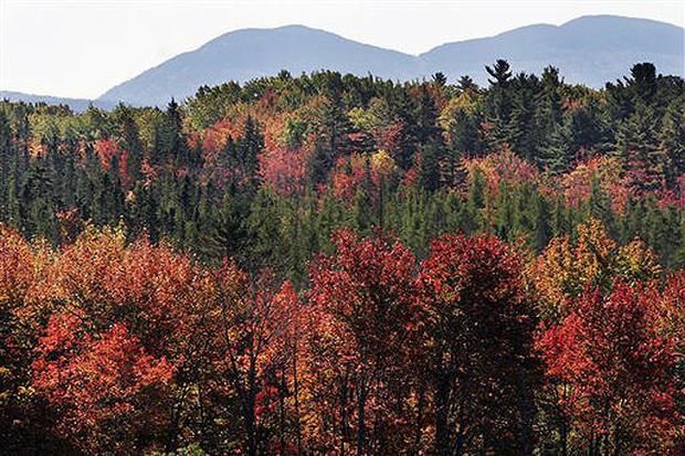 Fall Scenes 2007