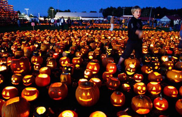 Pumpkins On Parade
