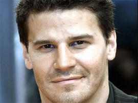 "David Boreanaz Sued by Kristina Hagan; ""Bones"" Extra Claims Sexual Harassment"