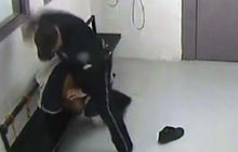 Caught on Tape: Officer Hits Inmate