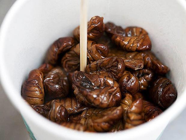 Good grub: 13 edible bugs