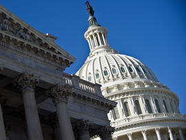 The dome of the U.S. Capitol is seen in Washington Jan. 4, 2011.