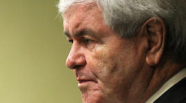 Gingrich: Over-regulation stymies private sector