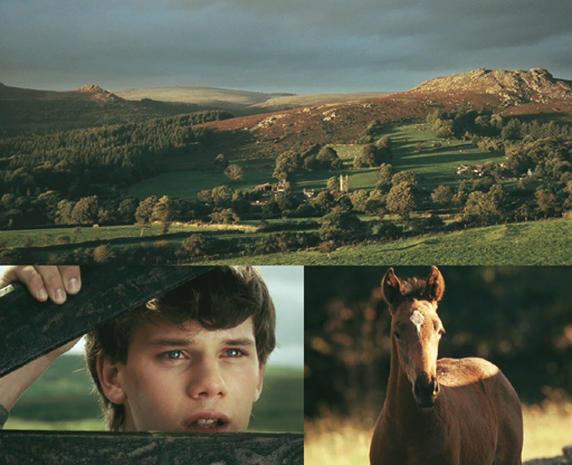 """Oscars 2012: """"War Horse"""""""