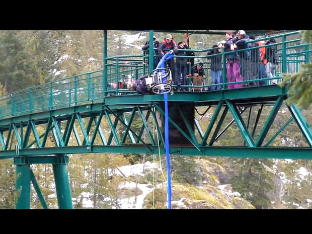 paraplegic bungee jump, wheelchair
