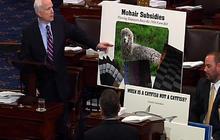 McCain mocks farm bill pork projects on Senate floor