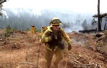 Calif. wildfires destroy 50 buildings