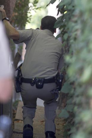 Bear captured near Los Angeles