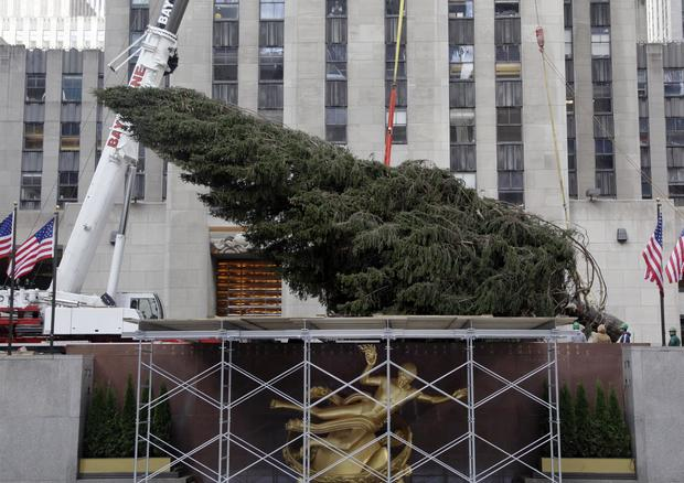 Rockefeller Center Christmas tree comes to NYC