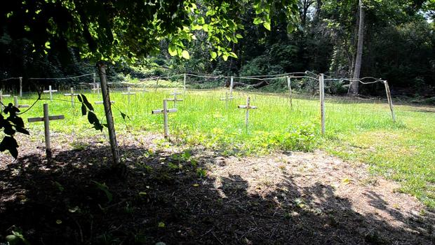 Unmarked gave sites on the grounds of the Dozier School for Boys.