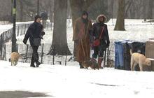 Northeast prepares for potentially historic blizzard