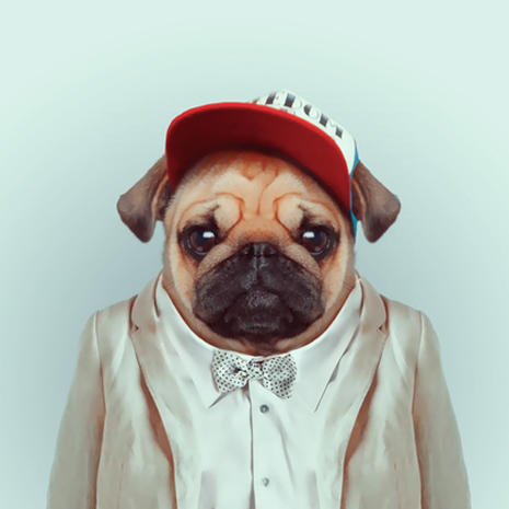 """""""Zoo Portraits"""": Animals dressed up as people"""