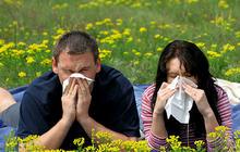 Top allergy cities of 2013