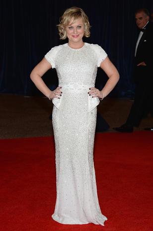 Stars at the 2013 White House Correspondents' Dinner