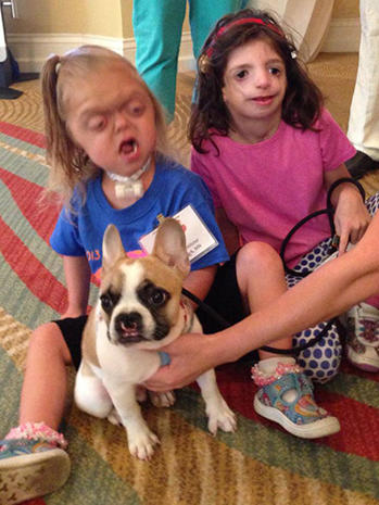 French bulldog Lentil helps kids with facial deformities