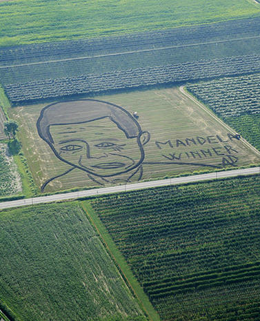 Mandela as muse