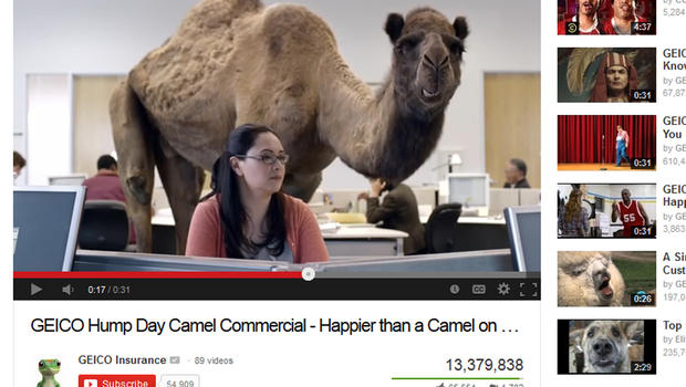 Hump Day Camel Geico Gif Quot Hump Day Quot Geico Commercial