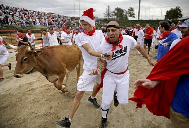 Thrill-seekers run with the bulls – in Georgia