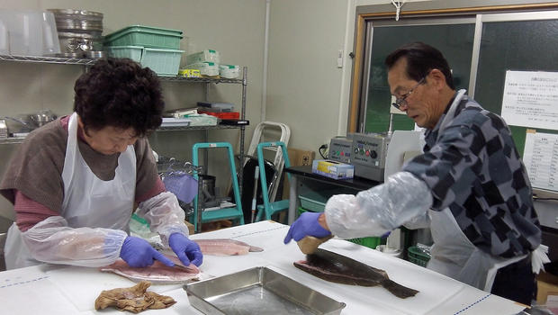 Workers prepare fish samples for radiation testing at the Marine Ecology Research Institute