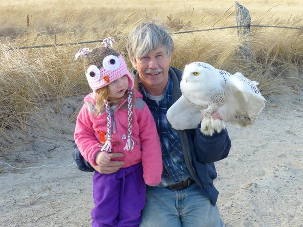 Saving the snowy owl