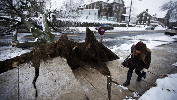 2014年2月5日在费城冬季风暴过后,一名妇女在一辆冰雪覆盖的倒下的树旁边的一条公用事业线下躲避,这棵树落在一辆小型货车上。