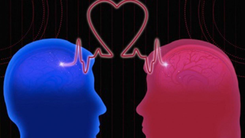Мозг и секс цена влюбленности