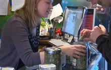 Denver holds first ever marijuana jobs fair