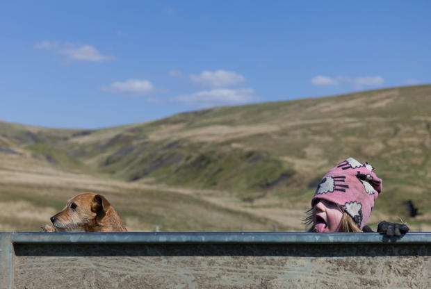 Life for a Yorkshire shepherdess