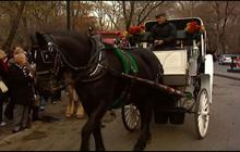 Electric cars could replace horse-drawn carriages