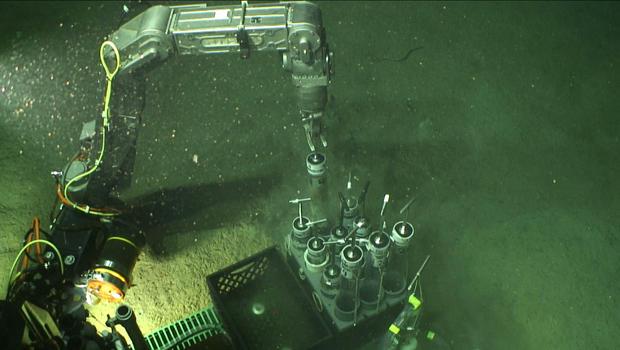 BP-漏油海湾,floor.jpg