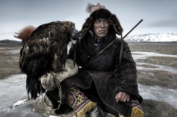 Smithsonian Magazine photo contest winners