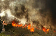 Thousands flee during wildfire emergency in California
