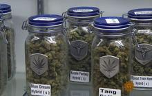 How Colorado has gone to pot