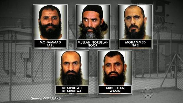 Freed members of the Taliban