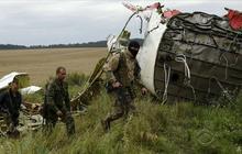 MH17 crash scene: Volunteers look for remains