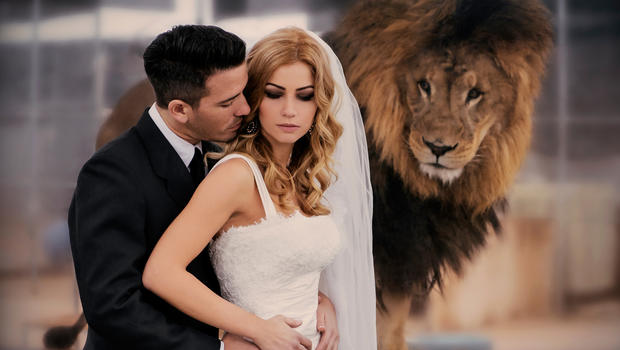 Exotic Animals Becoming New Must Have At Weddings Cbs News