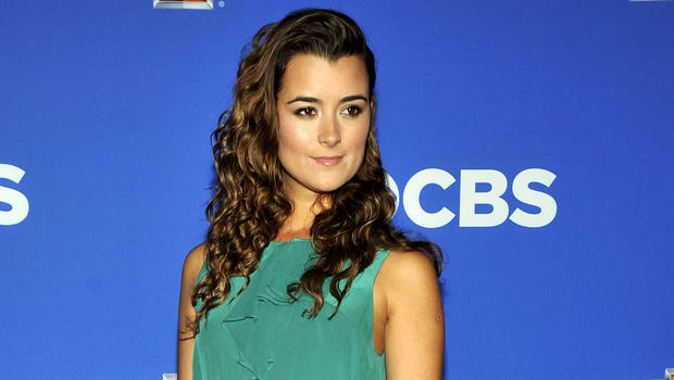 cote de pablo and michael weatherly married