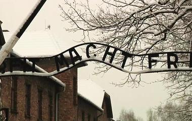 Holocaust survivors gather for Auschwitz 70th anniversary