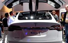 Should Apple buy Tesla?