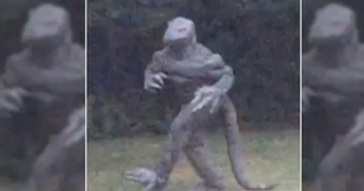 "Car Town Iphone >> Legendary ""Lizard Man"" reappears in South Carolina - CBS News"
