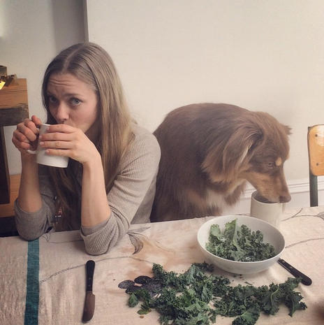Celebrities with their pups