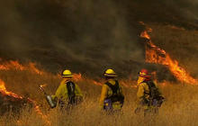 Scientists to inspect damage done by Yosemite wildfire