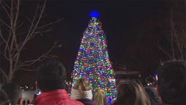 圣诞树 - 波士顿 - 共620.jpg