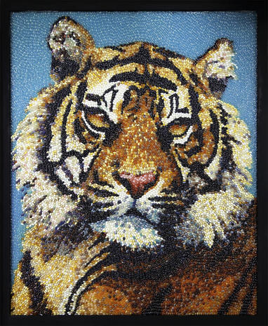 Art made with jelly beans