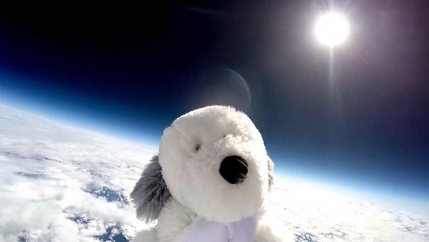 #FindSam campaign spreads after stuffed dog launched into space disappears
